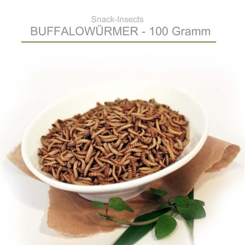 SNACK-INSECTS BUFFALOWÜRMER - 100 Gramm Pack ►