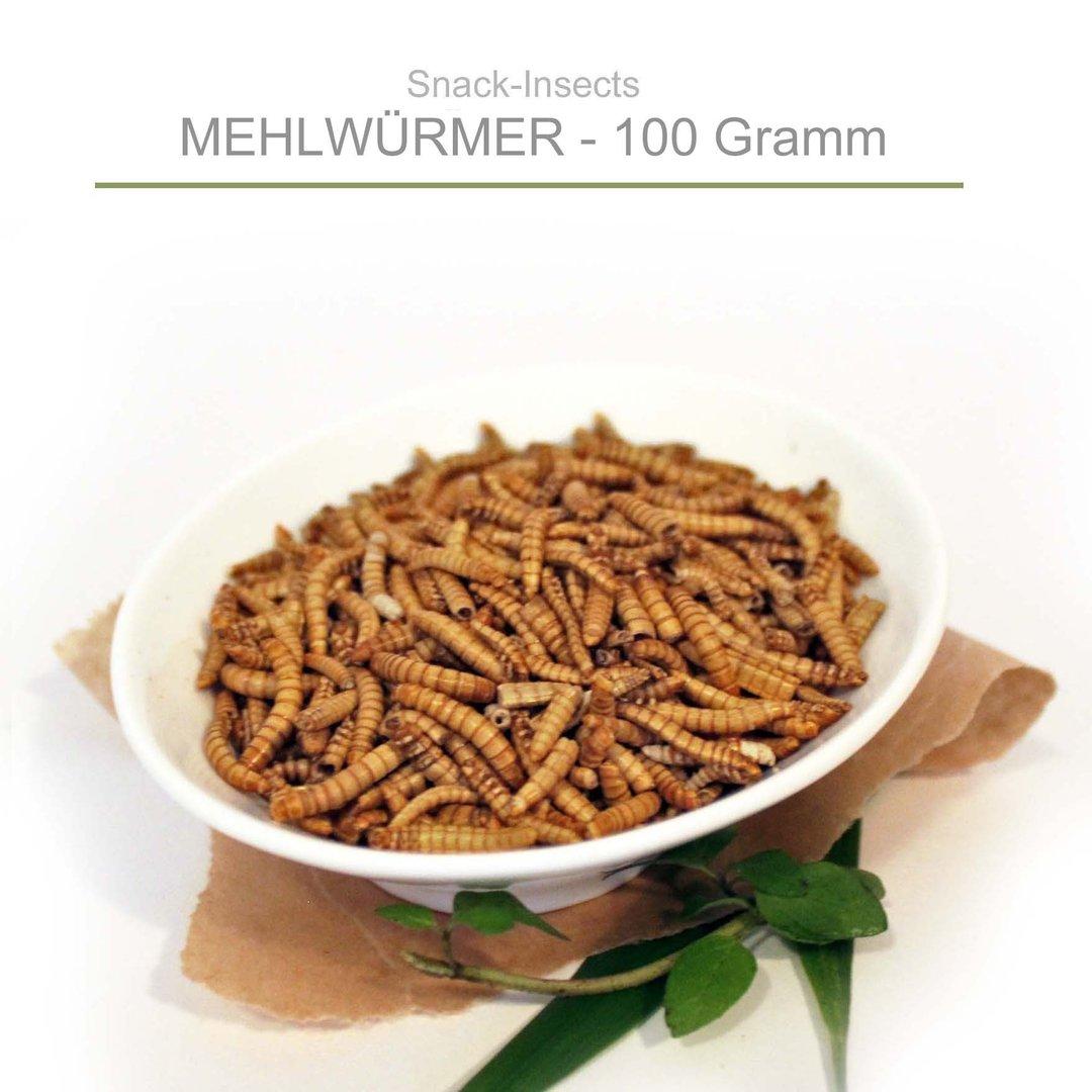 mehlw rmer snack insects essbare insekten zum essen kaufen. Black Bedroom Furniture Sets. Home Design Ideas