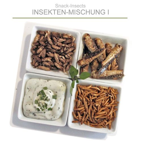 SNACK-INSECTS INSEKTENMISCHUNG - 25 Gramm Box ►