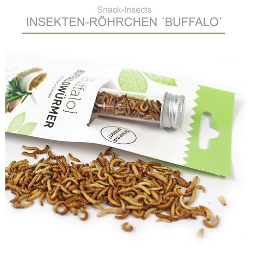 SNACK-INSECTS 'BUFFALO' - Insekten-Röhrchen mit Buffalowürmern ►