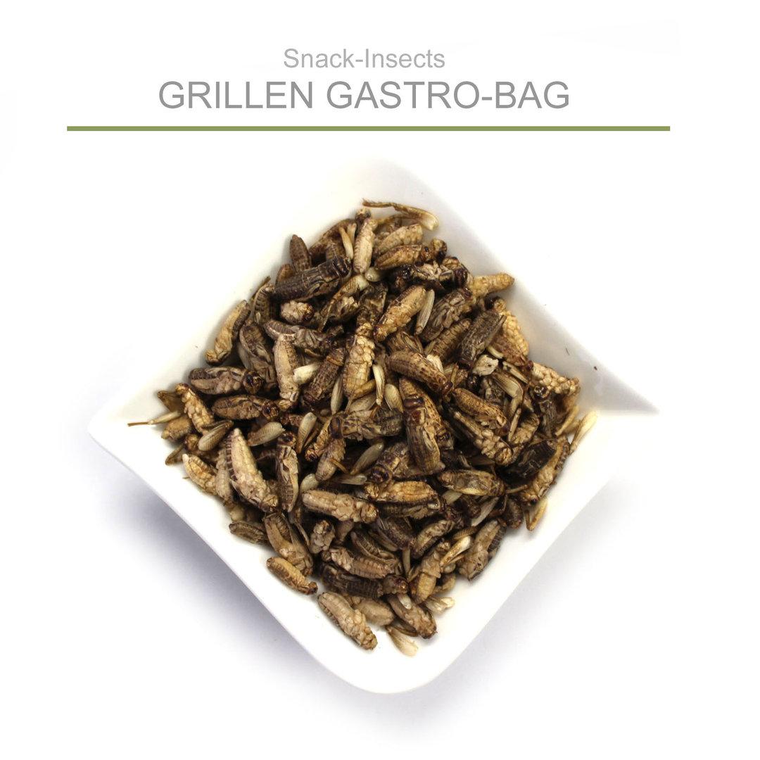 grillen essen essbare insekten im snack insects shop kaufen. Black Bedroom Furniture Sets. Home Design Ideas