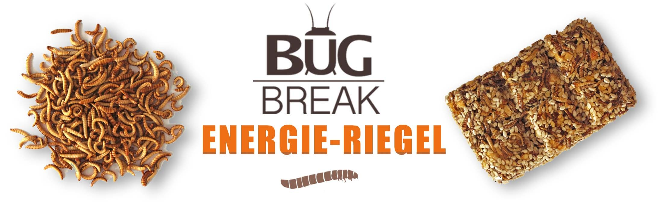 BUG-BREAK_KOPFZEILE_INSEKTENRIEGEL_INSEKTEN_RIEGEL_SNACK-INSECTS_BUGBREAK