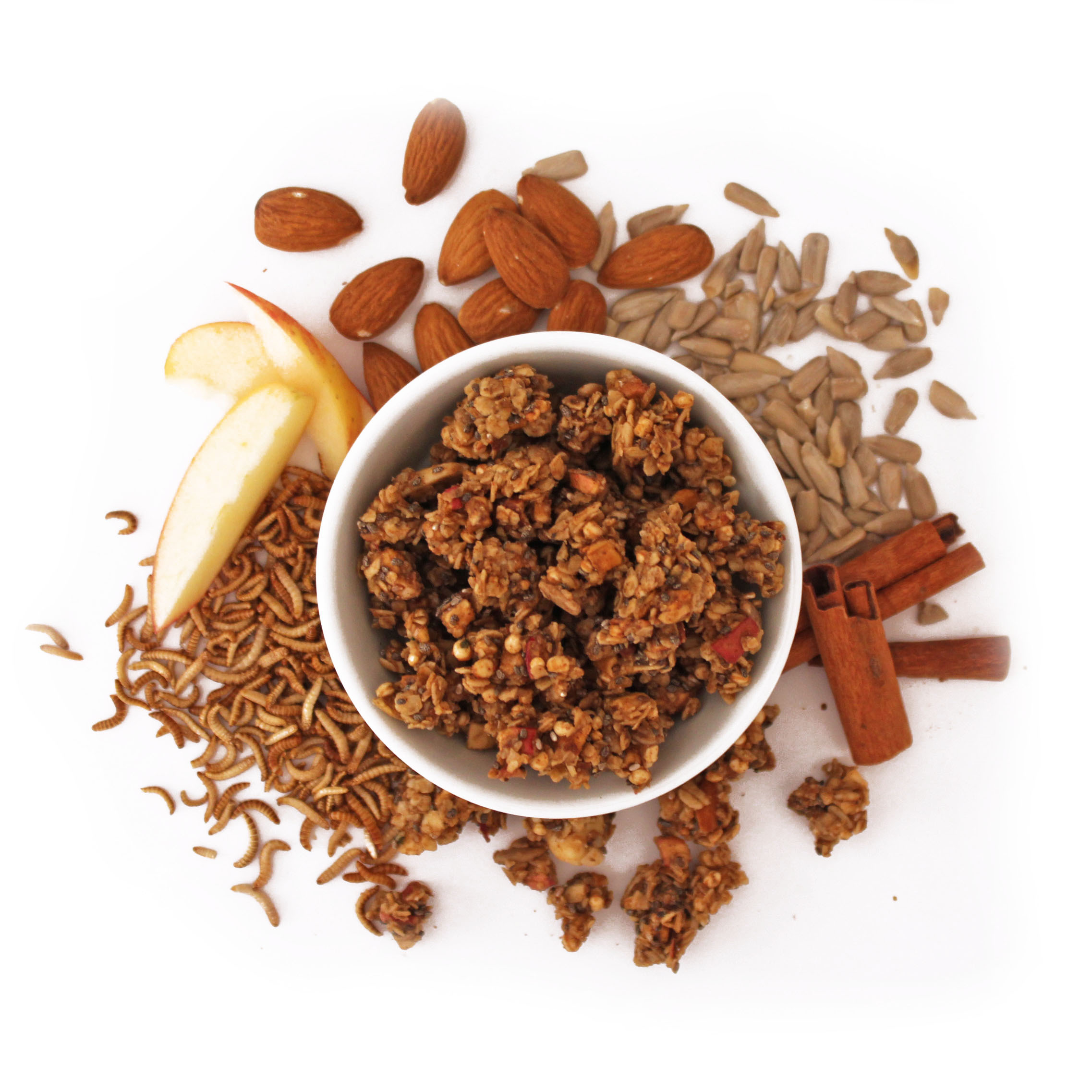 Snack-Insects_Granola